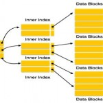 Indexes in DBMS