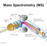 Introduction Of Mass Spectrometry