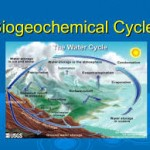 BIO GEO CHEMICAL CYCLE