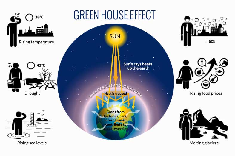 the green house effect The term greenhouse effect comes from the idea that the earth's atmosphere works in much the same way as a man-made greenhouse this structure is made primarily of glass, permitting sunlight to come in but trapping the resulting heat inside the structure.